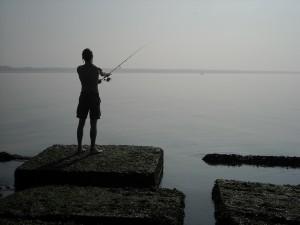 Vissen op Zuidpier IJmuiden