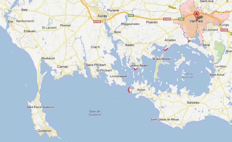 Zeebaarzen Golf van Morbihan