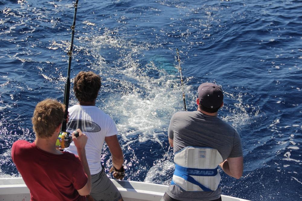 Madeira Big Game Fishing double hookup
