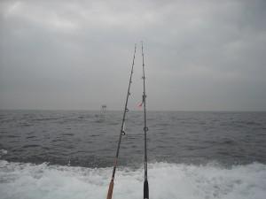 Wrakvissen op zee