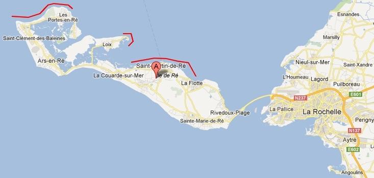 Zeebaarzen Ile de Ré